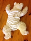 Baby Body Weiß Größe 86/92